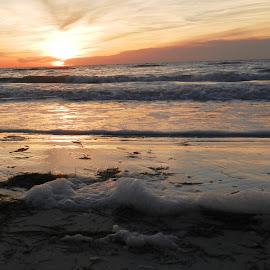 Foamy Beach at Sunset by Kathy Rose Willis - Landscapes Beaches ( orange, florida, sunset, beach, gray, foamy, foam )