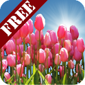Tulip Field Free icon