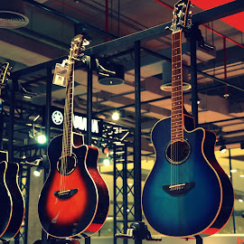 by Tahir Ali - Artistic Objects Musical Instruments