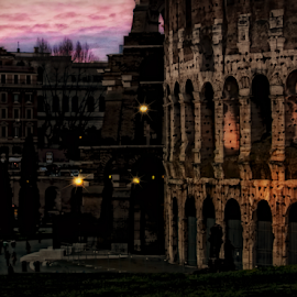 The Roman Colosseum by Doreen Rutherford - City,  Street & Park  Historic Districts