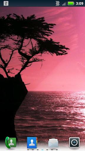 紫色の夕焼けの壁紙をライブ