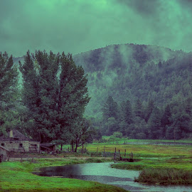 Home on the Rio Penasco by Kc Bonnell - Landscapes Prairies, Meadows & Fields ( nature, fog, creek, meadow, house,  )