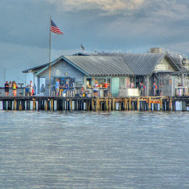 Anna Maria City Pier, Florida, place to eat and fish and visit by Walter Carlson - Buildings & Architecture Other Exteriors ( annia maria, tourist, food, gulf, pier, island )