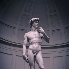 Michaelangelo's DAVID by Anupam Thakur - Buildings & Architecture Statues & Monuments ( florence, michaelangelo's david, gaytree, anupam thakur, italy )