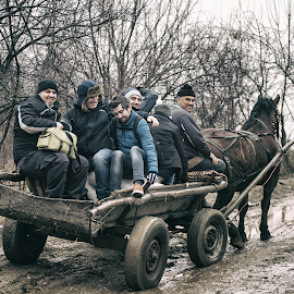 To work by Liviu Suciu - Transportation Other ( waggon, colors, horse )