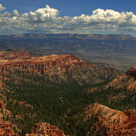 Bryce Canyon #2 by Daniel Hackett - Landscapes Deserts ( desert, park, national, canyon, landscape, wilderness, red, nature, utah, vista, formations, bryce, rocks )
