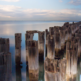 Princes Pier by Bevlea Ross - Landscapes Waterscapes ( princes pier )