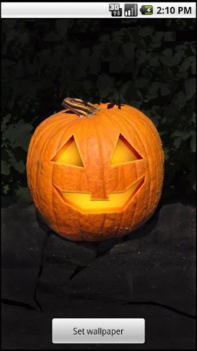 Halloween Pumpkin Live