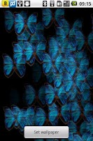 Screenshot of Blue Butterfly Live Wallpaper