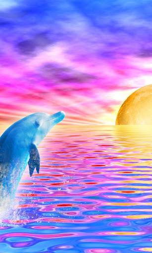 Rainbow Dolphin Live Wallpaper