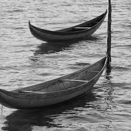the boat by Mai Trần - Abstract Patterns