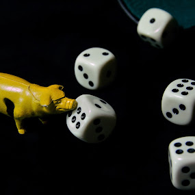 Schwein gehabt by Anton Donev - Artistic Objects Toys ( black background, isolated, dice, lucky, rolling, white, game, pig )