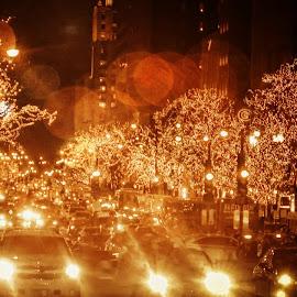 City Streets by Tricia Scott - City,  Street & Park  Street Scenes ( holiday, lights, traffic, cars, street, road, city,  )