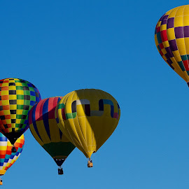 Balloon Festival by James Grier - Artistic Objects Other Objects ( hot air balloon, albuquerque )