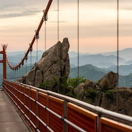 Morning Walk by Justine Carlyle - Buildings & Architecture Bridges & Suspended Structures ( climb, gureumdari, wolchulsan, bridge, sunrise, morning, suspended, south korea, mokpo, mist )