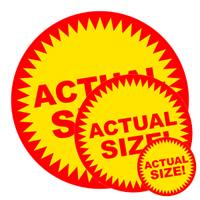 actual size!