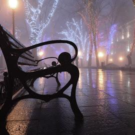 Foggy Christmas in Odessa by Elena Tishchenko - City,  Street & Park  Night ( foggy, night photography, ukraine, odessa, christmas, nightscape )