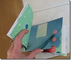 green book inside