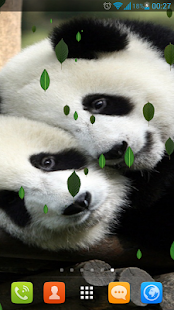 Sweet Pandas Live Wallpaper - screenshot