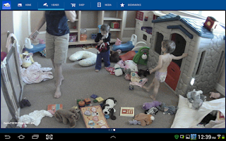 Screenshot of iCamViewer IP Camera Viewer