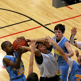 Jump Ball? by Greg Stewart - Sports & Fitness Basketball