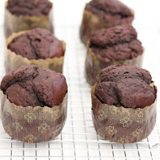 Best Chocolate Muffins
