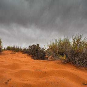 red sands by Eric Ebling - Landscapes Deserts ( sand, sky, desert, arizona, bend, cloudy, 5dmark2, horseshoe )