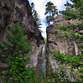 Andy Creek Falls by Don Evjen - Landscapes Waterscapes ( clouds, pines, stream, cliffs, montana, waterfall, creek )