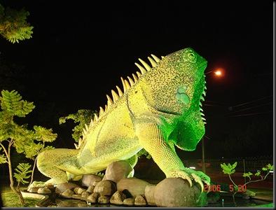 iguana urdesa