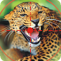 Game Wild Animal Hunting Game APK for Kindle