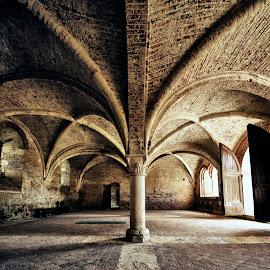 Abbazia di S. Galgano (interno) by Francesco Leonardis - Buildings & Architecture Public & Historical ( tuscany, hdr, historical, architecture, italy )