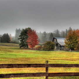 Autumn Farmland by Ernie Kasper - Landscapes Prairies, Meadows & Fields ( field, fence, canada, barn, fall, farmland, steel, bc, character )