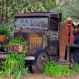Wildwood Old Truck by Patrick Flood - Transportation Other ( canon, iris farm, photosbyflood, yucaipa, smoke pot, california, wildwood, landscape, old truck )