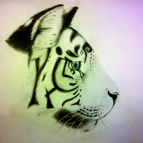 Tiger head by Viktória Nagy - Drawing All Drawing