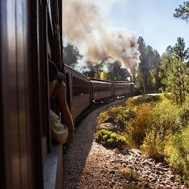Rounding The Bend by James Kirk - Transportation Trains ( passenger, train, bending, smoke, steam )