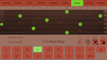 Screenshot of Guitarist's Reference Free