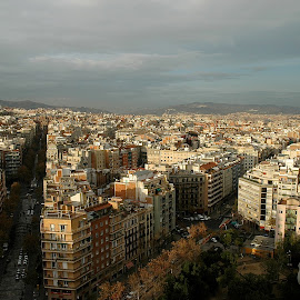 Barcelona  by Mary Gemignani - City,  Street & Park  Street Scenes (  )