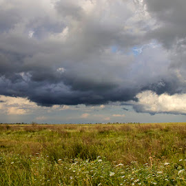 storm by Edith Polverini - Landscapes Cloud Formations ( clouds, raining, storm, black clouds, prairie )