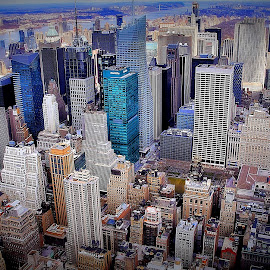by Jose Figueiredo - City,  Street & Park  Skylines ( empire state building, skylines, town, new york )
