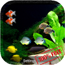 Coral Reef HD LiveWallpaper