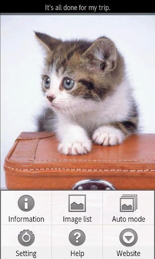【免費書籍App】ipiks Love cats 4 Lite-APP點子