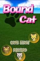 Screenshot of Bound Cat