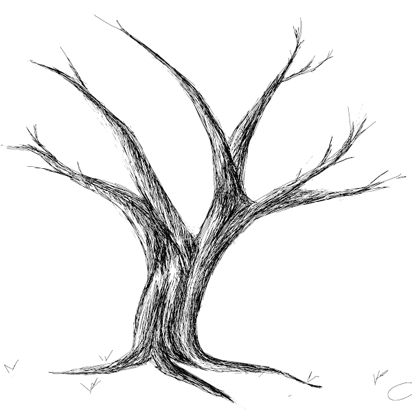 how to draw a tall dead tree