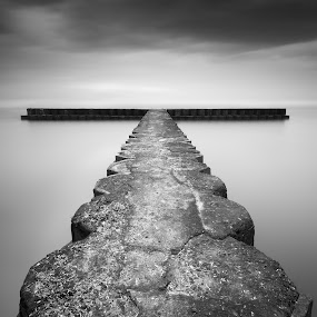 T by Eggy Sayoga - Black & White Landscapes ( bali, monochrome, indonesia, wave breaker, long exposure, beach )