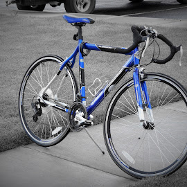 Blue Bike by Shane Lusk - Transportation Bicycles