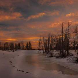 Leduc City Park by Joseph Law - City,  Street & Park  City Parks ( stream, winter, leduc, alberta, bushes, snow, trrees, frozen, city park, glory sky, evening )