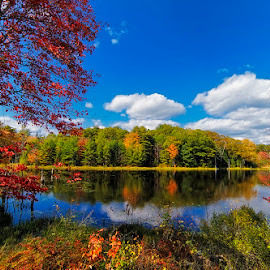 Fall Colors Impression I by Michael Otter - Landscapes Waterscapes