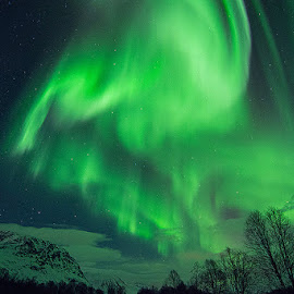 Aurora dream by Dan Steinbakk - Landscapes Starscapes ( aurora borealis northern lights mountains color,  )