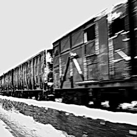 by Сања Сања - Transportation Trains ( rolling stock, black and white, locomotive, train )