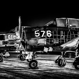 Warbirds! by Chris Thomas - Transportation Airplanes ( propeller, airplanes, white, texan, black )